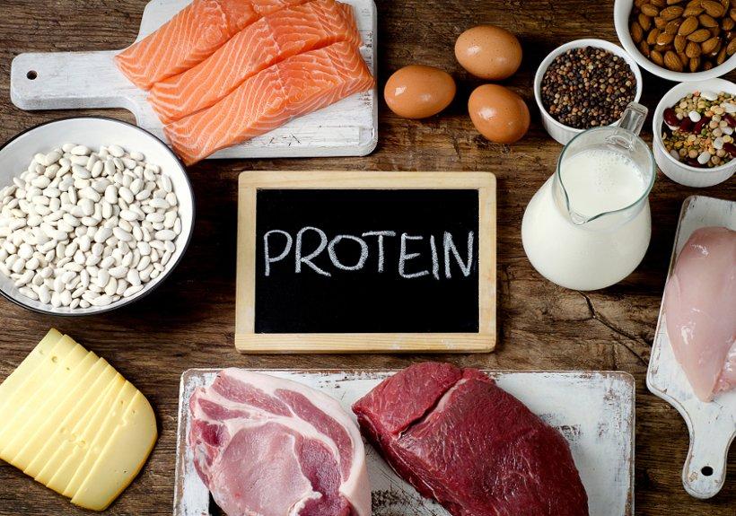 Рацион без животного белка – нормальный или ущербный?