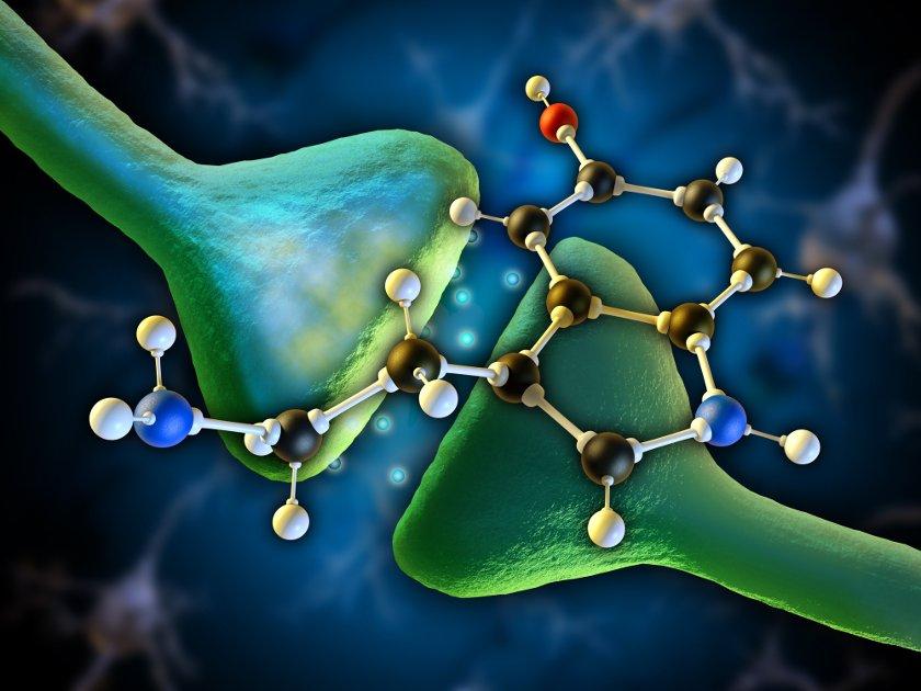 Дефицит серотонина – это опасно