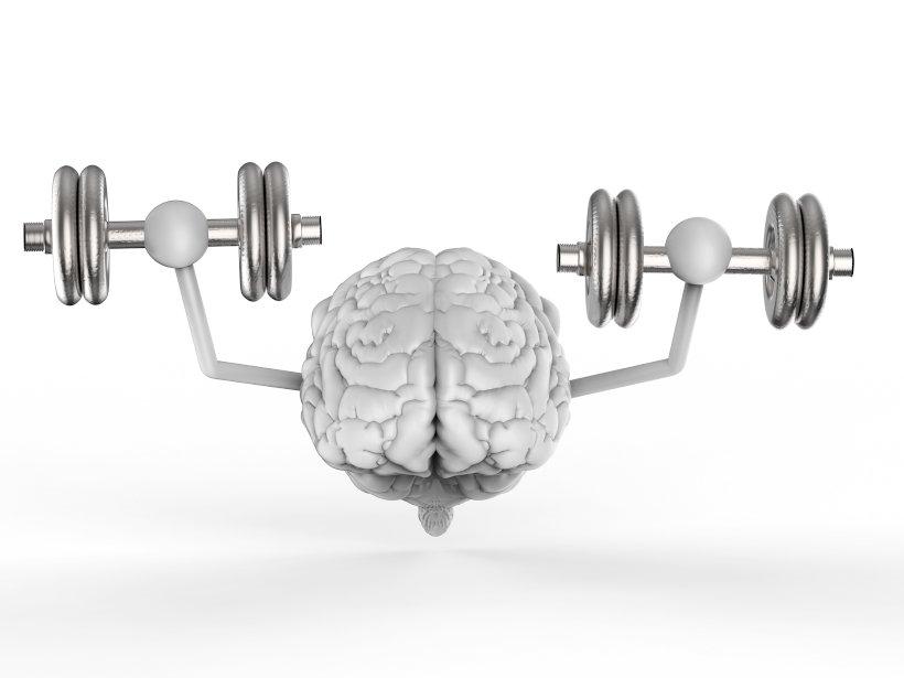 Зарядка для мозгов - тренировки и упражнения для ума и памяти