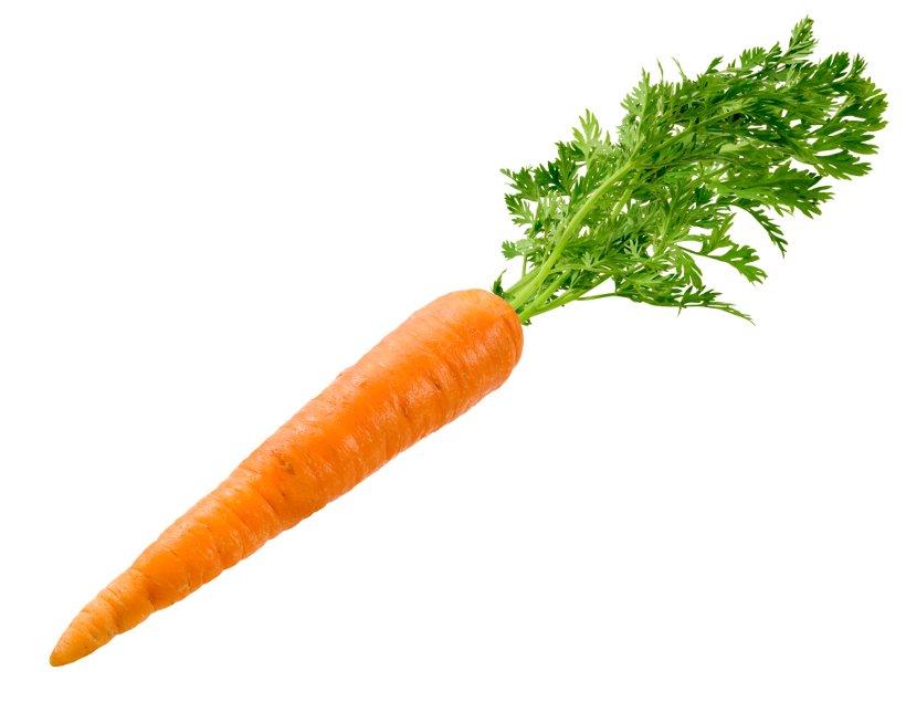 Морковь – незаменимый помощник при нарушениях потенции и либидо у мужчин
