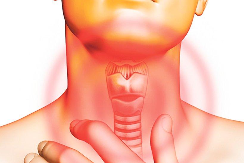 Лечение рака горла в Германии: как это делают в Университетской клинике Фрайбурга