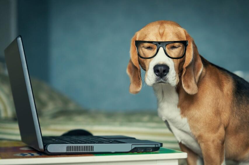 Как защитить зрение ребенка, особенно после учебного года в режиме онлайн?