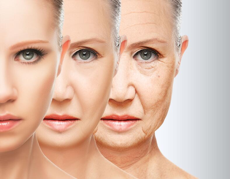 Какая часть нашего тела стареет быстрее?