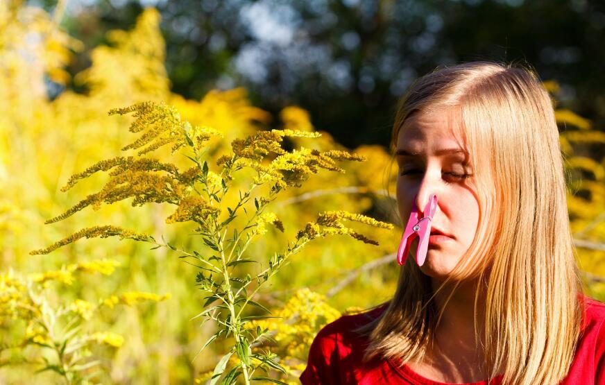Какие растения могут спровоцировать аллергию в августе?
