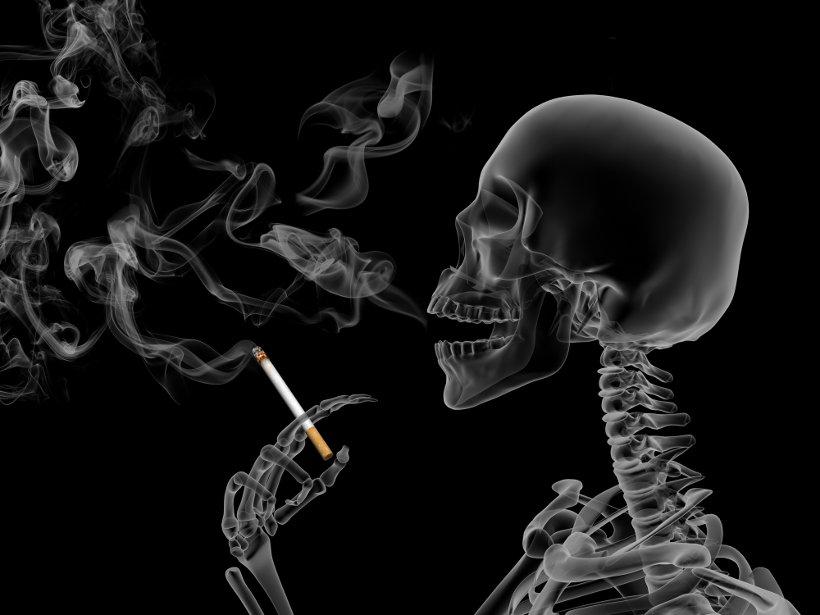 Канцерогены и другие опасные вещества, содержащиеся в сигаретном дыме