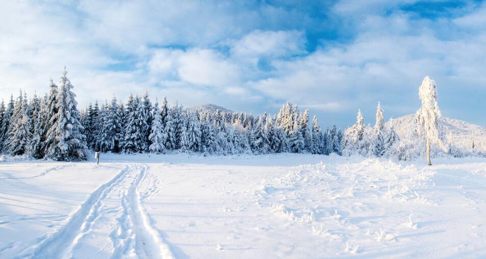 Какие меры по профилактике простуды можно принимать, не дожидаясь зимы?